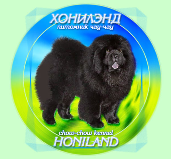 Chow-Chow Kennel Honiland